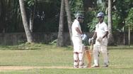 Cricket Stock Footage