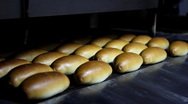 Stock Video Footage of Baked bread in the bakery