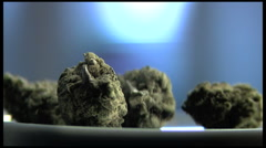 Marijuana buds close up Stock Footage