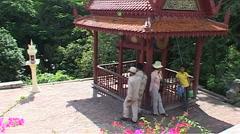 Wat Phnom, Cambodia Stock Footage