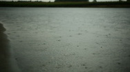 Raindrops falling on water Stock Footage