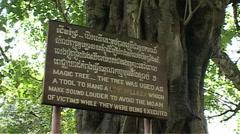 Choeung Ek, The Killing Fields, magic tree sign Stock Footage
