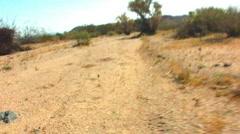 POV Eastern Joshua Tree National Park Hiking Stock Footage