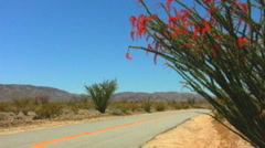 Stock Video Footage of Tourist Cars In Joshua Tree National Park