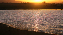Sunset Lights Rippling Water Stock Footage