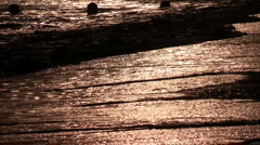 Wave rolls on the beach  Stock Footage