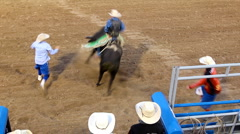 Rodeo bull riding - stock footage