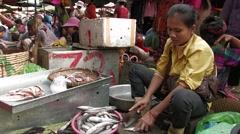 Cambodia: Woman Cleans Fish Stock Footage