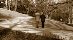 Eldery couple walking in the park Stock Footage