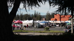 De Anza Saturday Flea Market Stock Footage