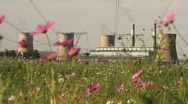 Coal Powered Power Plant rack focus to Flowers and Bee GFHD Stock Footage