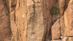 Untethered Mountain Climber on 50ft Rock Face - Part 2 of 2 Stock Footage