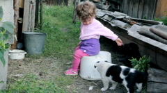 little kid playing with puppies - stock footage