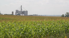 Cornfield and silos. - stock footage