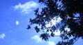 Timelapse Cloudscape HD42 Footage
