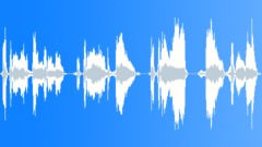 David Beckham (Ringtone) Sound Effect