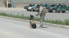 Special Forces Soldier with Drug Dog  (HD)m Stock Footage