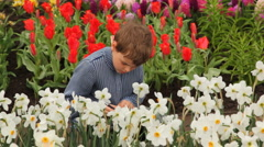Little boy sits on footpath near flowerbeds Stock Footage