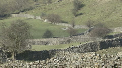 Dry stone walls near Reeth, Swaledale. Stock Footage