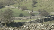 Stock Video Footage of Dry stone walls near Reeth, Swaledale.
