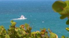 Puerto Rico - Sword Fish - Sail Fish Power Fishing Boat 1 Stock Footage