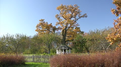 Arbor in autumn park Stock Footage