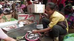 Cambodia:  Woman in Fish Market Stock Footage