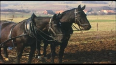 Farmer with plow and horses (vintage 8 mm amateur film) - stock footage