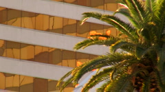 Building and palm tree  V1 - HD - stock footage