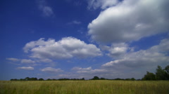 Timelapse clouds over an unripe field of wheat Stock Footage
