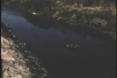 Archive 1950's palm beach county florida drainage canal long shot 8mm Stock Footage