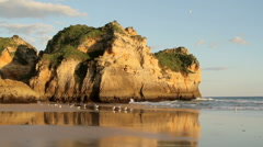 Seagulls at the beach from Alvor in Portugal Stock Footage