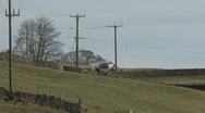 Stock Video Footage of Herding sheep near Reeth, Swaledale.