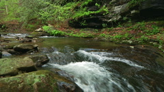 Peaceful Trout Stream 4 - stock footage