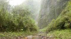 Very humid hillsides beside the Rio Malo, Ecuador Stock Footage