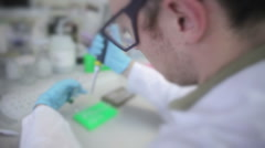 Scientist working - stock footage