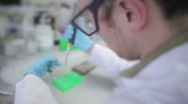 Stock Video Footage of Scientist working