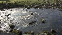 Upland stream near Reeth, Swaledale. Stock Footage