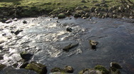 Stock Video Footage of Upland stream near Reeth, Swaledale.