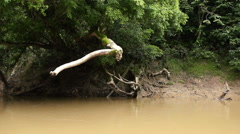 Drifting down an Amazonian river Stock Footage
