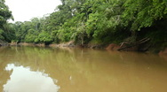 Stock Video Footage of Drifting down an Amazonian river