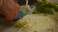 HD1080p25 Chef expertly Fennel Stock Footage