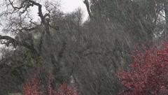 Rain Storm Stock Footage