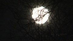 Super-moon (Full moon) Stock Footage