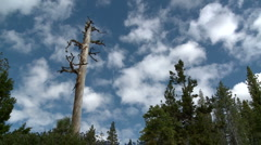 Lake Tahoe Sky - stock footage
