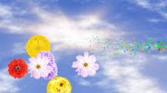 Spring Has Sprung - stock footage