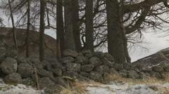 Loch Muick, Scotland rocks Stock Footage
