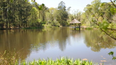 Gazebo on Pond - stock footage