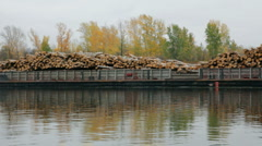 Ship loaded with wood on the river Stock Footage