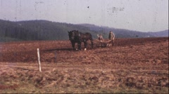 Farmer with horse and plow (Vintage 8 mm amateur film) Stock Footage